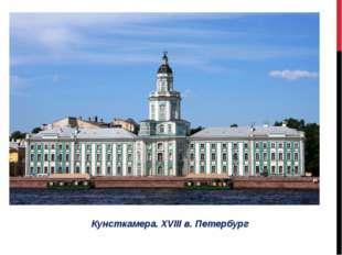 Кунсткамера. XVIII в. Петербург