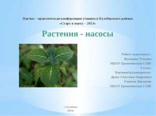 Научно – практическая конференция учащихся Кулебакского района «Старт в науку