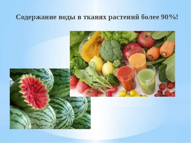 Содержание воды в тканях растений более 90%!