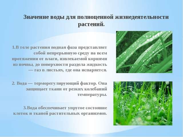 Значение воды для полноценной жизнедеятельности растений. 1.В теле растения...
