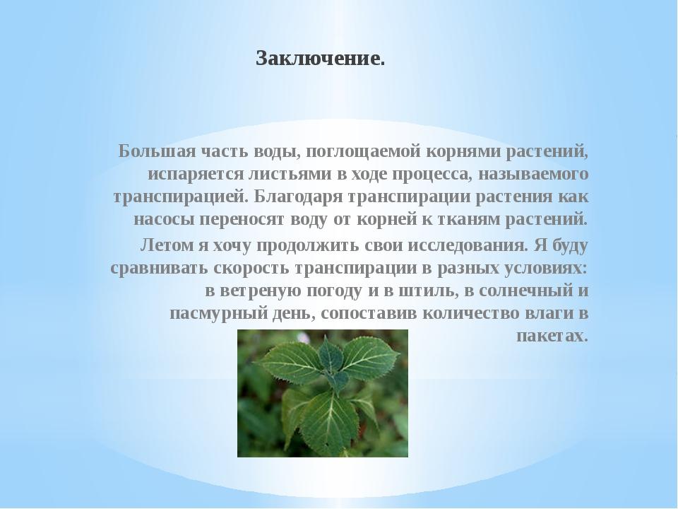 Заключение. Большая часть воды, поглощаемой корнями растений, испаряется лист...
