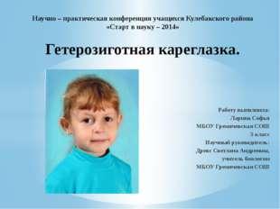 Работу выполнила: Ларина Софья МБОУ Гремячевская СОШ 5 класс Научный руководи