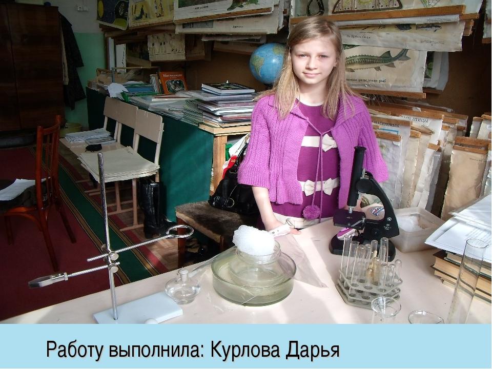 Работу выполнила: Курлова Дарья
