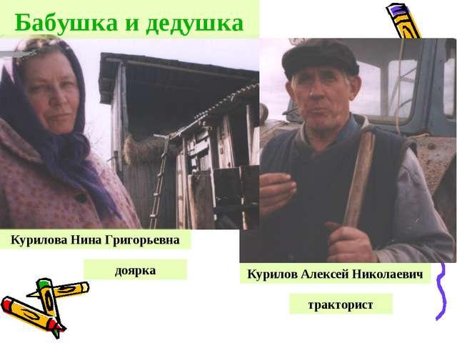 Курилов Алексей Николаевич Курилова Нина Григорьевна тракторист доярка Бабушк...