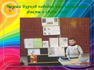 Илюша Бурков поведал нам интересные факты о своём коте