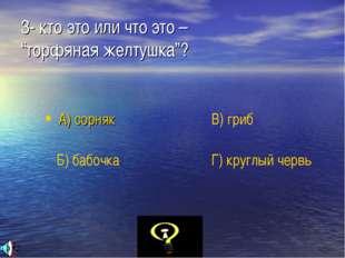 """3- кто это или что это – """"торфяная желтушка""""? А) сорняк Б) бабочка В) гриб Г)"""