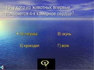 10- у кого из животных впервые появляется 4-х камерное сердце? А) лягушка Б)