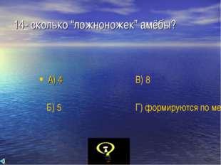 """14- сколько """"ложноножек"""" амёбы? А) 4 Б) 5 В) 8 Г) формируются по мере необход"""