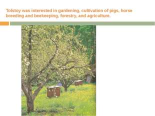 Tolstoy was interested in gardening, cultivation of pigs, horse breeding and