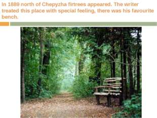 In 1889 north of Chepyzha firtrees appeared. The writer treated this place wi