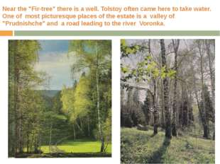"Near the ""Fir-tree"" there is a well. Tolstoy often came here to take water. O"