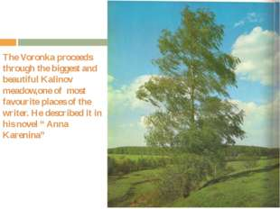 The Voronka proceeds through the biggest and beautiful Kalinov meadow,one of