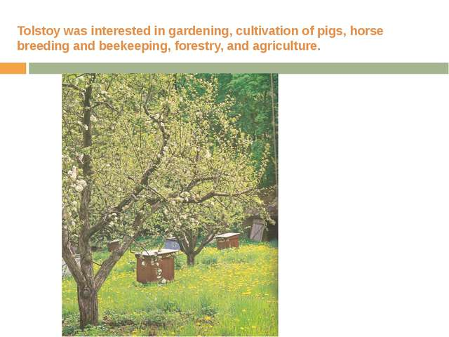 Tolstoy was interested in gardening, cultivation of pigs, horse breeding and...