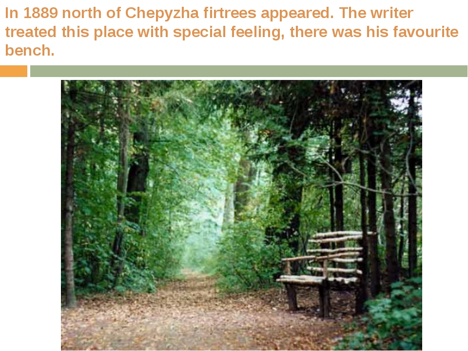 In 1889 north of Chepyzha firtrees appeared. The writer treated this place wi...