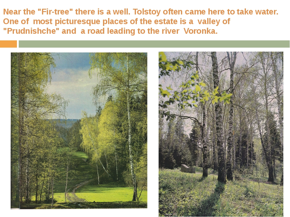 "Near the ""Fir-tree"" there is a well. Tolstoy often came here to take water. O..."