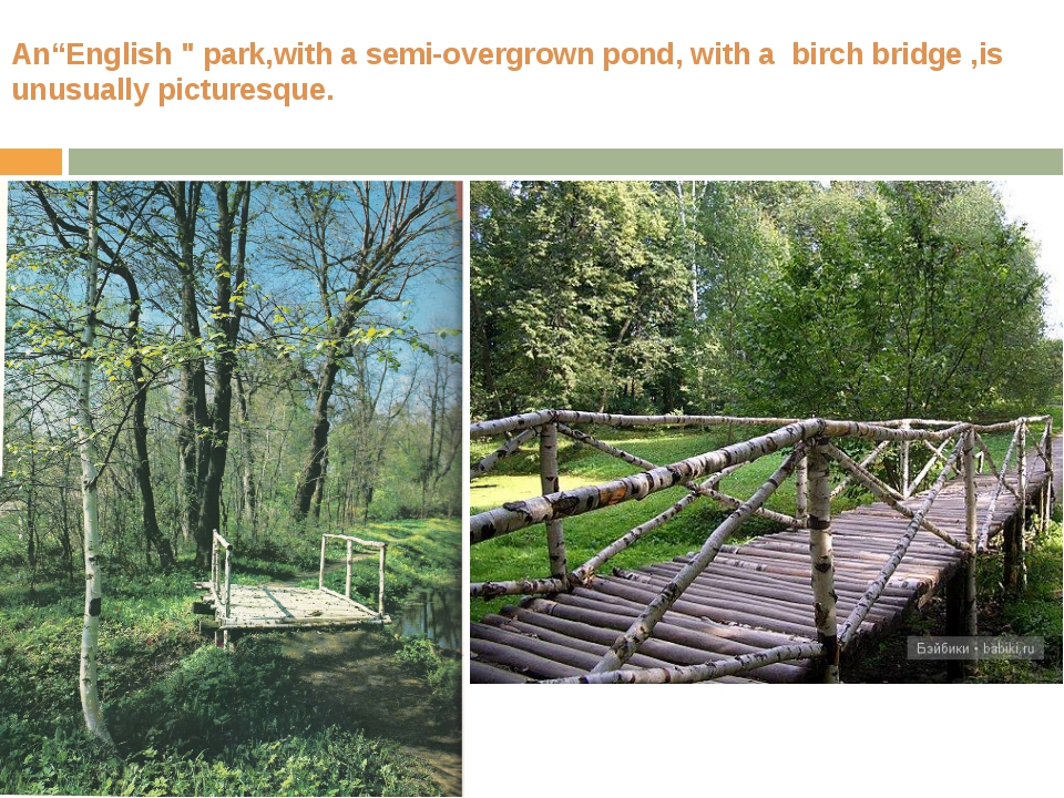 "An""English "" park,with a semi-overgrown pond, with a birch bridge ,is unusual..."