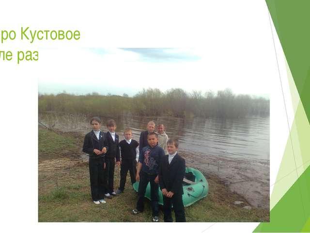 Озеро Кустовое после разлива реки Ишим