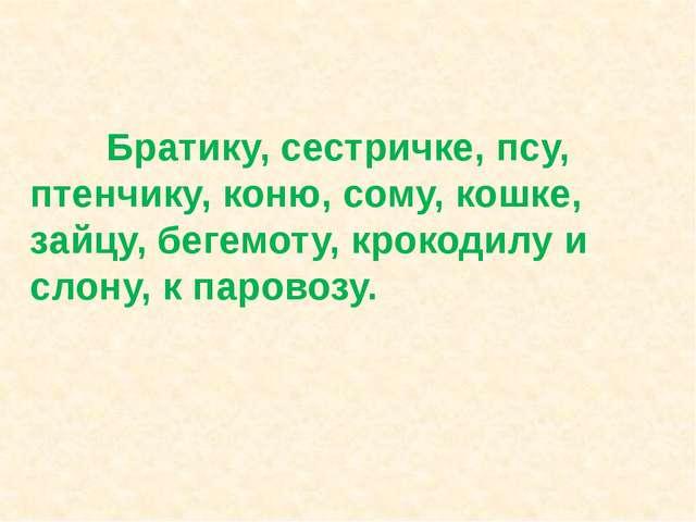 Братику, сестричке, псу, птенчику, коню, сому, кошке, зайцу, бегемоту, кроко...
