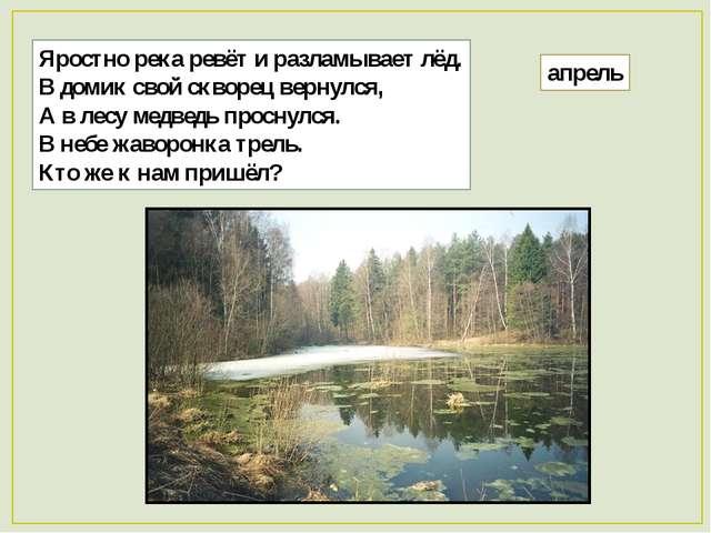 Яростно река ревёт и разламывает лёд. В домик свой скворец вернулся, А в лесу...