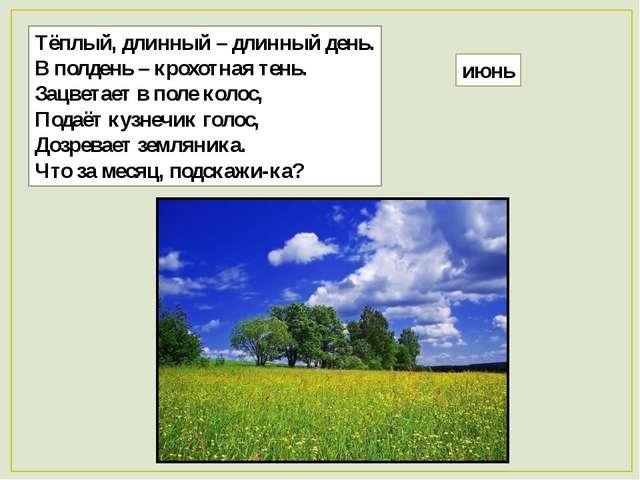 Тёплый, длинный – длинный день. В полдень – крохотная тень. Зацветает в поле...
