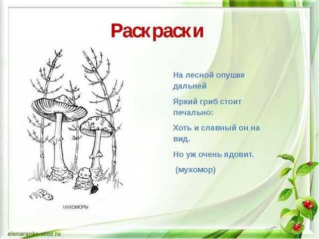 Раскраски На лесной опушке дальней Яркий гриб стоит печально: Хоть и славный...
