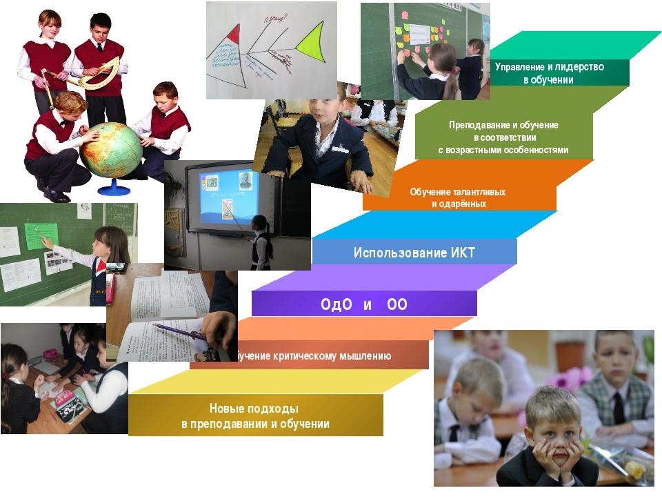 Обучение талантливых и одарённых Преподавание и обучение в соответствии с воз...