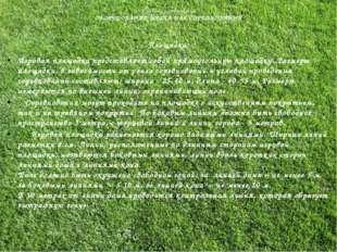 Правила соревнований ОБОРУДОВАНИЕ МЕСТА ДЛЯ СОРЕВНОВАНИЙ Площадка: Игровая пл