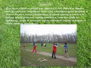 Правила соревнований ПЕРЕБЕЖКА Если после одного из ударов мяч оказался в игр