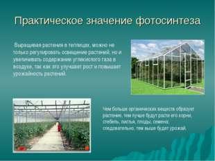 Практическое значение фотосинтеза Выращивая растения в теплицах, можно не тол