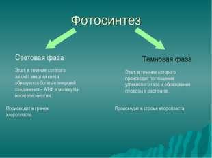 Фотосинтез Световая фаза Темновая фаза Этап, в течение которого за счёт энерг