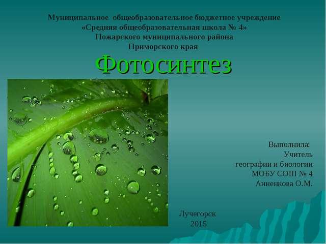 Фотосинтез Муниципальное общеобразовательное бюджетное учреждение «Средняя об...