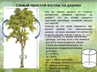 Самый простой взгляд на дерево Что мы можем увидеть со стороны математики впе
