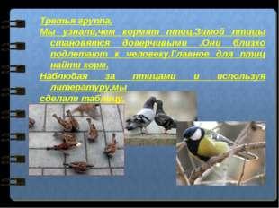 Третья группа. Мы узнали,чем кормят птиц.Зимой птицы становятся доверчивыми .