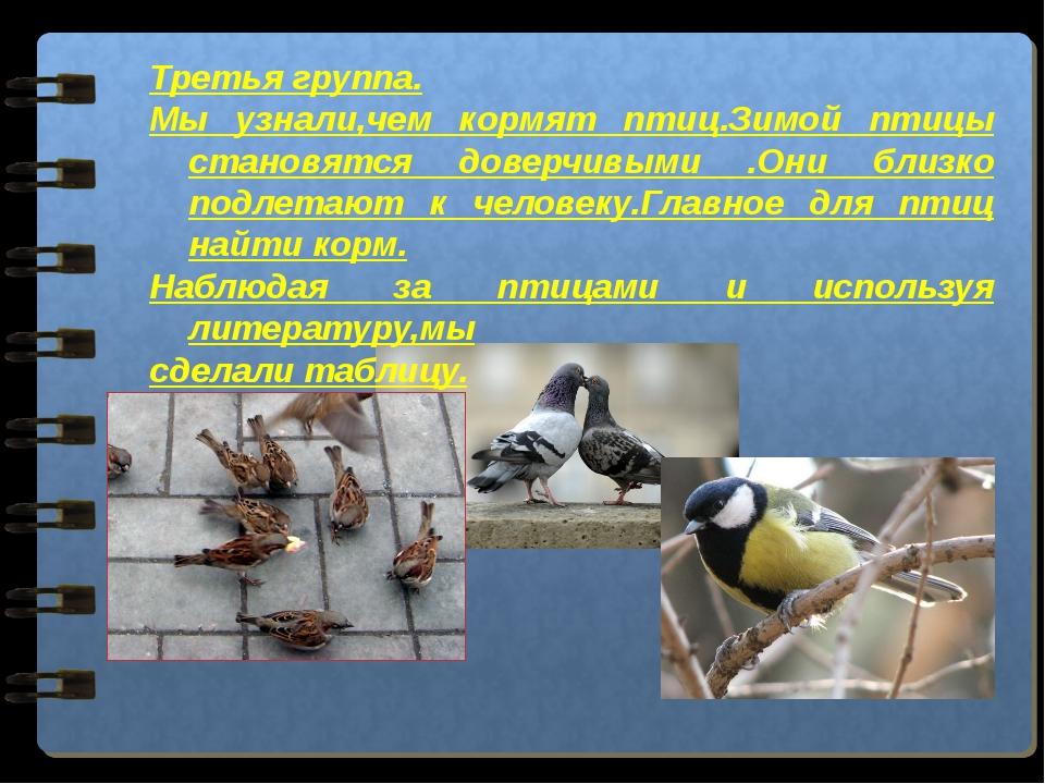 Третья группа. Мы узнали,чем кормят птиц.Зимой птицы становятся доверчивыми ....