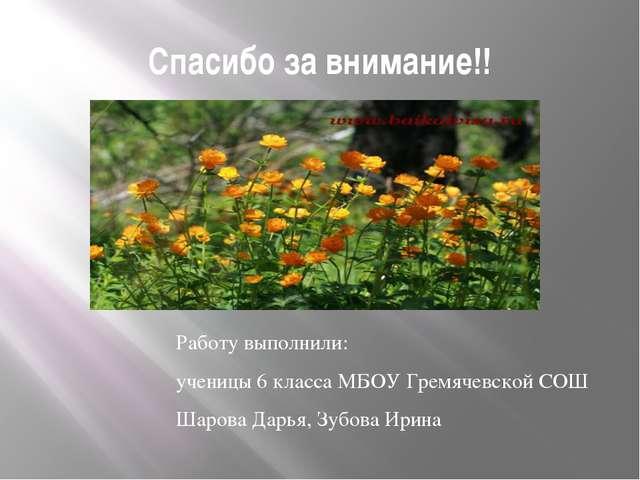 Спасибо за внимание!! Работу выполнили: ученицы 6 класса МБОУ Гремячевской СО...