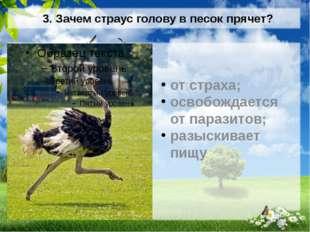 3. Зачем страус голову в песок прячет? от страха; освобождается от паразитов;