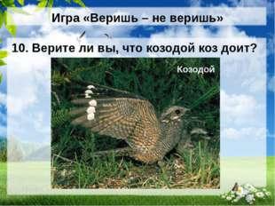 Игра «Веришь – не веришь» 10. Верите ли вы, что козодой коз доит? Козодой (НЕ