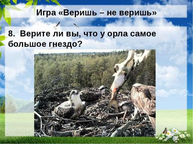 Игра «Веришь – не веришь» 8. Верите ли вы, что у орла самое большое гнездо?