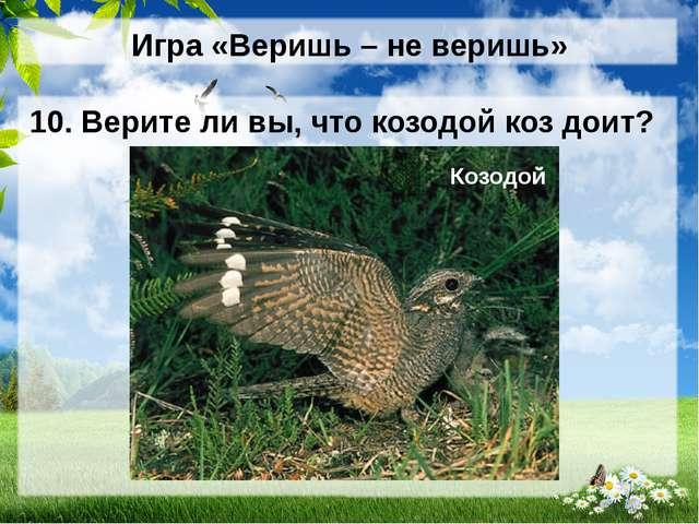 Игра «Веришь – не веришь» 10. Верите ли вы, что козодой коз доит? Козодой (НЕ...