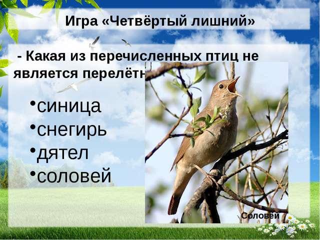 Игра «Четвёртый лишний» - Какая из перечисленных птиц не является перелётной?...