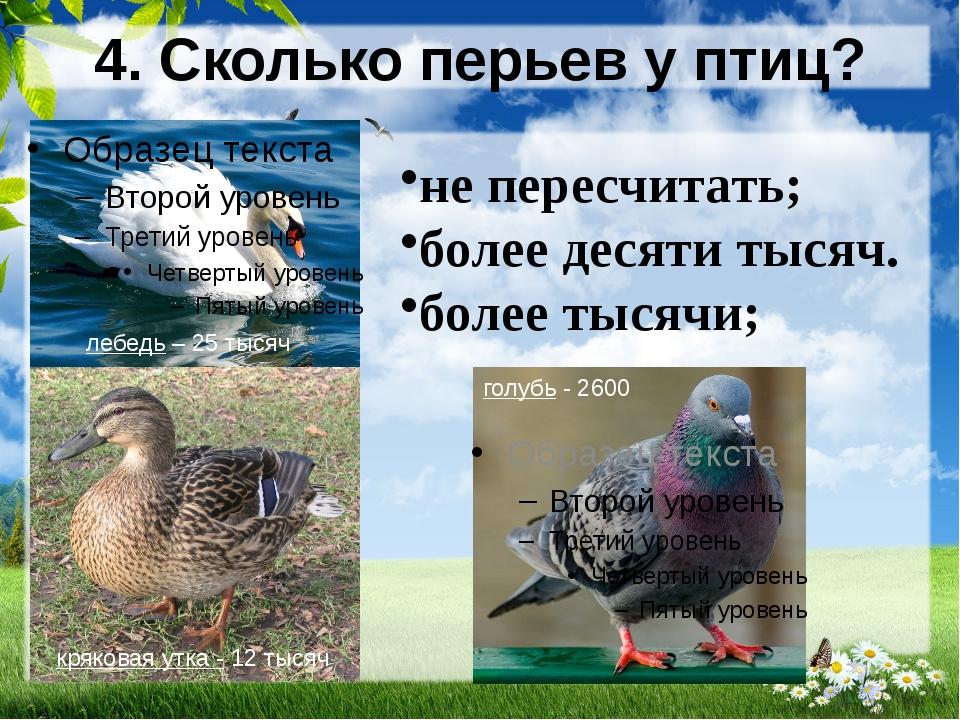 4. Сколько перьев у птиц? не пересчитать; более десяти тысяч. более тысячи; л...