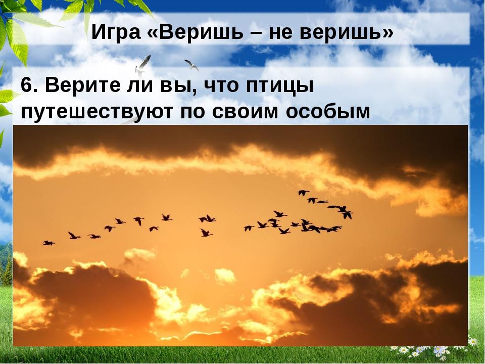 Игра «Веришь – не веришь» 6. Верите ли вы, что птицы путешествуют по своим ос...