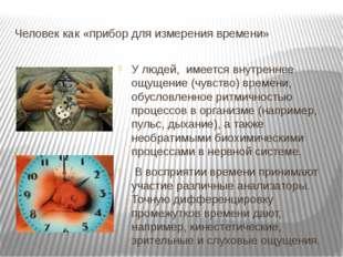 Человек как «прибор для измерения времени» У людей, имеется внутреннее ощущен