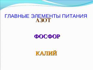 ГЛАВНЫЕ ЭЛЕМЕНТЫ ПИТАНИЯ АЗОТ КАЛИЙ ФОСФОР