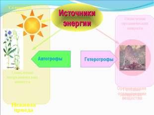 Источники энергии Органические вещества Солнечный свет Окисление неорганическ