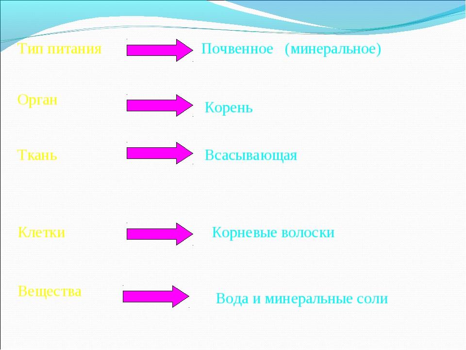 Тип питания Орган Ткань Клетки Вещества Почвенное (минеральное) Корень Всасыв...