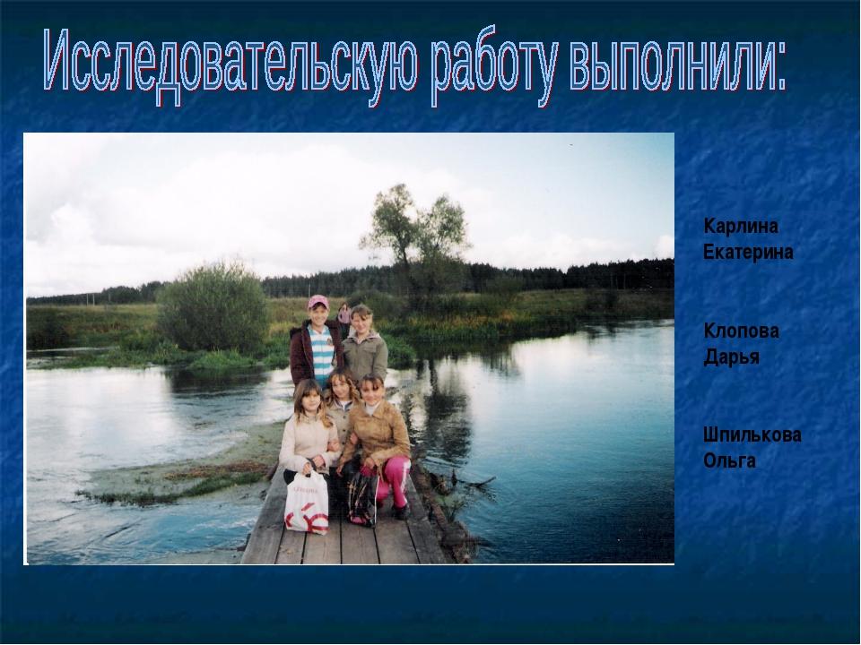 Карлина Екатерина Клопова Дарья Шпилькова Ольга