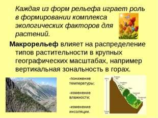 Каждая из форм рельефа играет роль в формировании комплекса экологических фа