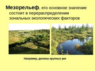 Мезорельеф, его основное значение состоит в перераспределении зональных эколо
