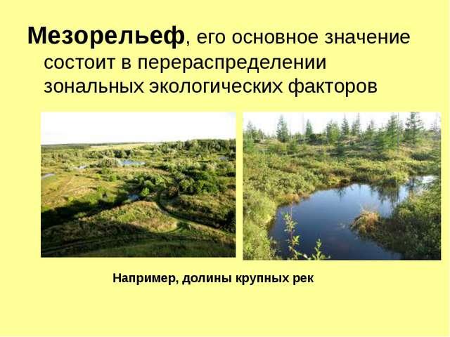 Мезорельеф, его основное значение состоит в перераспределении зональных эколо...